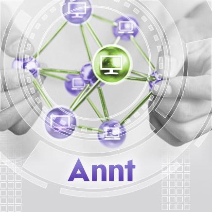 Дизайн интерфейса системы администрирования «Annt»