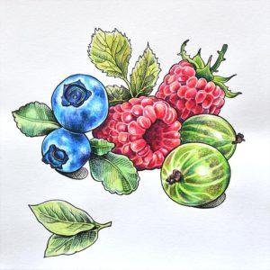 Иллюстрации карандашами