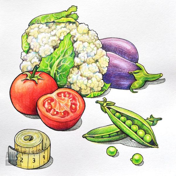 """Иллюстрация карандашами """"Овощи"""""""