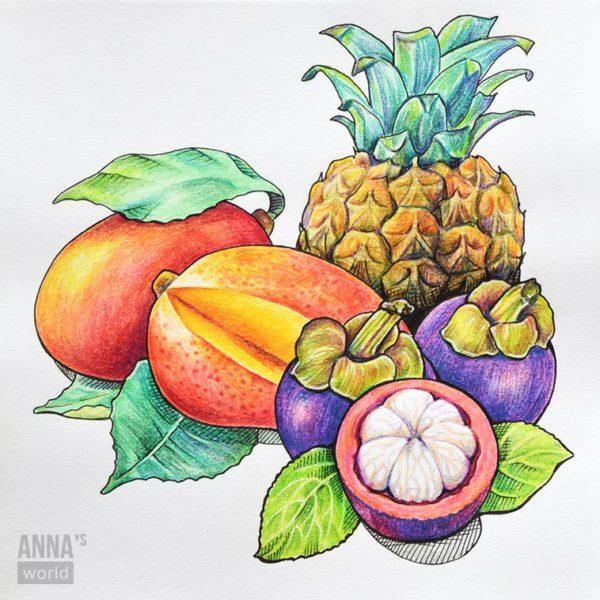 """Иллюстрация карандашами """"Фрукты"""""""